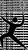 icon-sportart-Badminton