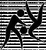 icon-sportart-Judo
